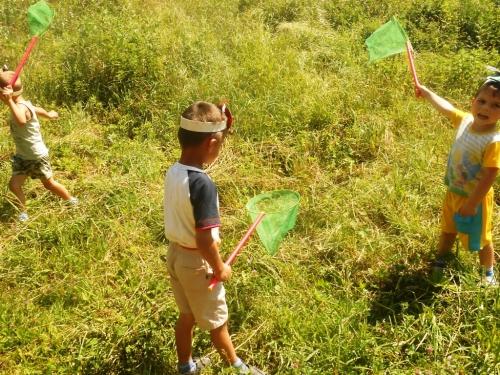 ловит жучков и бабочек